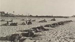 General Allenby, Osmanlı Ordusu'nu Filistin'de Nasıl Yok Etti ?