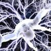 """Zihin kontrolü, """"Tıbbî İdam""""dır ! İşkencesi Mağduru"""