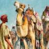 İslam Dünyasının Alim Hanımları