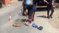 Eyüp Belediyesi ekipleri yavru köğeği kurtardı