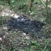 Yakılmış erkek cesedi bulundu