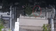 Çorum'daki Mezarlık daki 'ağlayan kızı' rahat bırakın