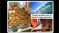 Türkiye 24 Haziran seçimlerin de patates ve KH KANUNLARI ak partiye 2 milyon oy kaybettirecek