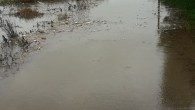 Bırakın Sakarya da seçimleri köyler sular altında kalacak