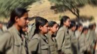 PKK'nın iğrenç yüzü bir annenin ifadesinde