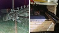 Pes dedirten hırsızlık! Tren raylarını çalarken suçüstü yakalandılar… Serbest bırakıldılar