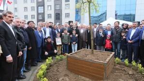 Şehit Şehmus Poyraz Parkı Yeniden Düzenledi