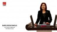 İstanbul Milletvekili, TBMM Plan ve Bütçe Komisyonu üyesiEmine Gülizar Emecan