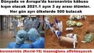 Dünyada ve Avrupa'da koronavirüs kâbusu kışın olacak 2021.1 ayın 3 ay arası ölümler. Her gün ayrı ülkelerde 500 bulacak