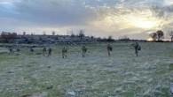 Mardin'de PKK operasyonu: 18 mahallede sokağa çıkma yasağı ilan edildi.