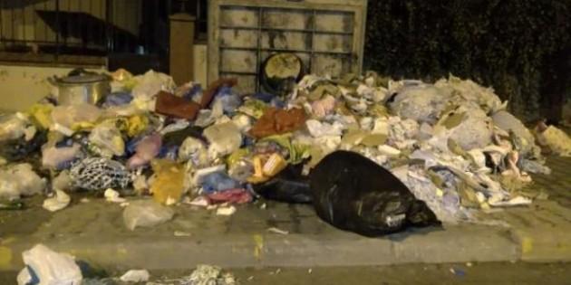 Maltepe'de yükselen çöp yığınlarına İBB neden müdahale etmiyor? Cevap Beyaz Masa'dan geldi