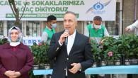 Sultangazi Belediyesi Yeni Bir Ağaç Dikim Seferberliği Başlattı