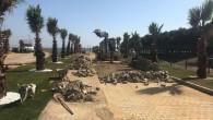 Halk Plajı, Eyüpsultanlılar İçin Hazırlanıyor