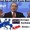 Do not be afraid from Europe