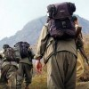Ceylanpınar'da 4 PKK'lı terörist yakalandı