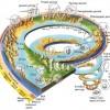 Jeolojik Zaman Tablosu