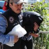 Asteğmene PKK propagandasından gözaltı