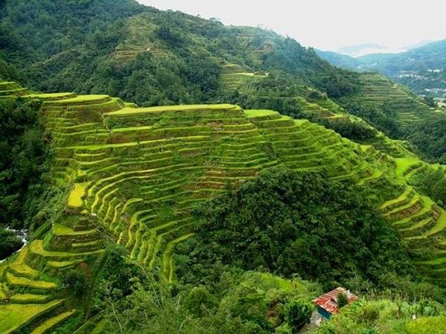 9-banaue-pirinc-teraslari-filipinler
